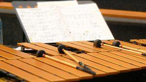 独特の美しい響き。ビブラフォンの魅力とおすすめ曲