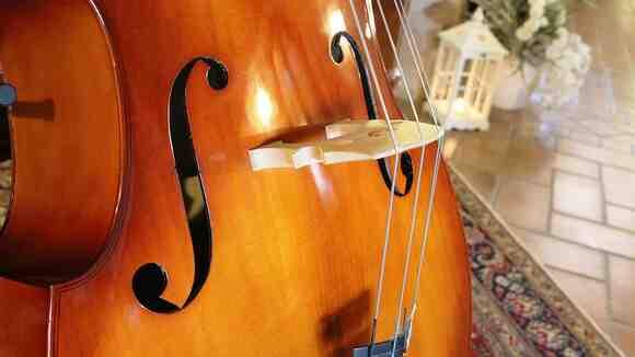【吹奏楽部のための】コントラバス・パートの魅力と練習方法