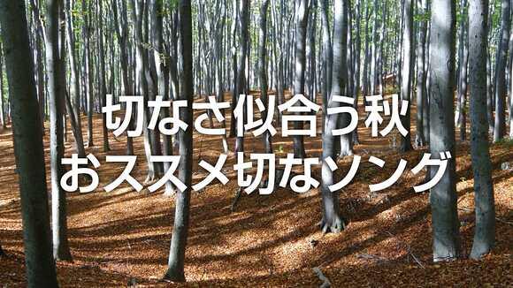 切なさ似合う秋、浸りたい気分で聴くおススメ切なソング