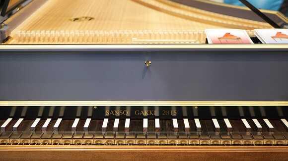 【ピアノ演奏】「エリーゼのために」を弾いてみよう!