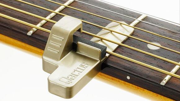 【開発者が語る】Qactus(カクタス)は本当にギター挫折者をゼロにできるのか?
