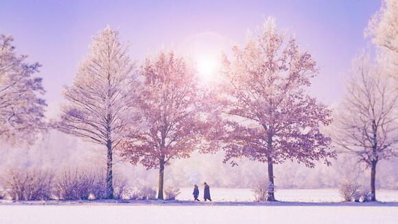 冬の音楽フェス日程まとめ