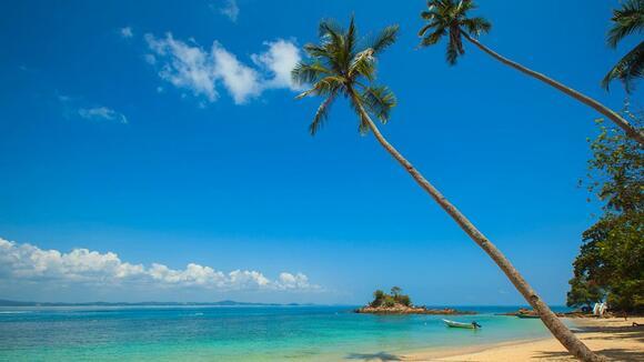 夏のビーチフェス日程まとめ